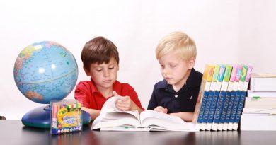 Hanek tuplikuje: Szanse edukacji regionalnej na lekcjach języka mniejszości narodowej lub etnicznej