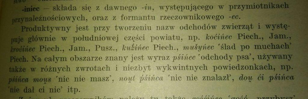 O psińcu w pracy Walentego Dobrzyńskiego