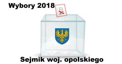 Ankieta: wybory do sejmiku woj. opolskiego
