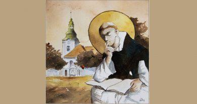 Aleksander Lubina: Hanek i oni (Mimry z mamrami) – cz. 6