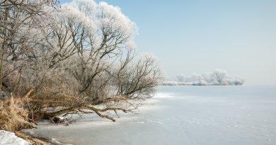 Piotr Miemiec: Jezioro Goczałkowickie