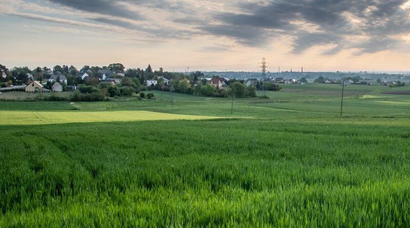 Obrazy Górnego Śląska (#6): Górki