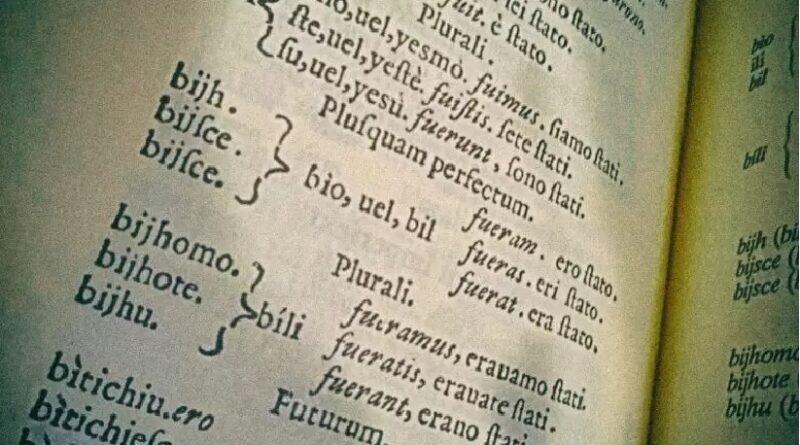 System deklinacji rzeczowników języka śląskiego. Próba klasyfikacji